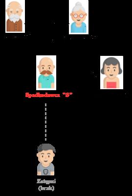 dziedziczenie bez testamentu ustawowe małżonek rodzice