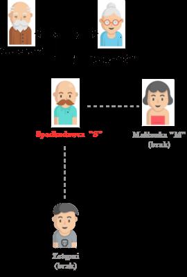 dziedziczenie bez testamentu ustawowe rodzice